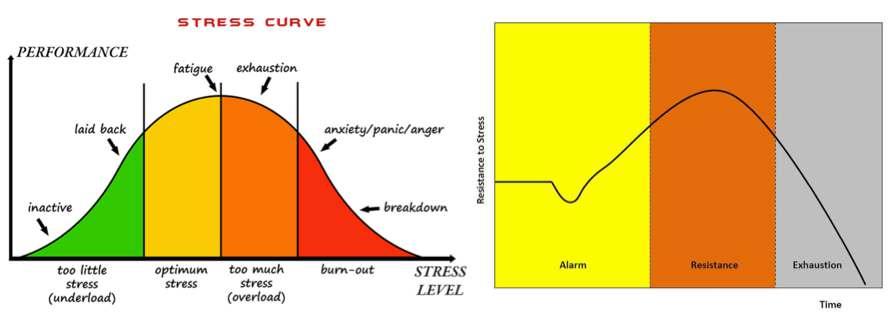 Deux courbes du stress: la première contient le bon et le moins. La seconde indique le processus logique en cas de persistance.