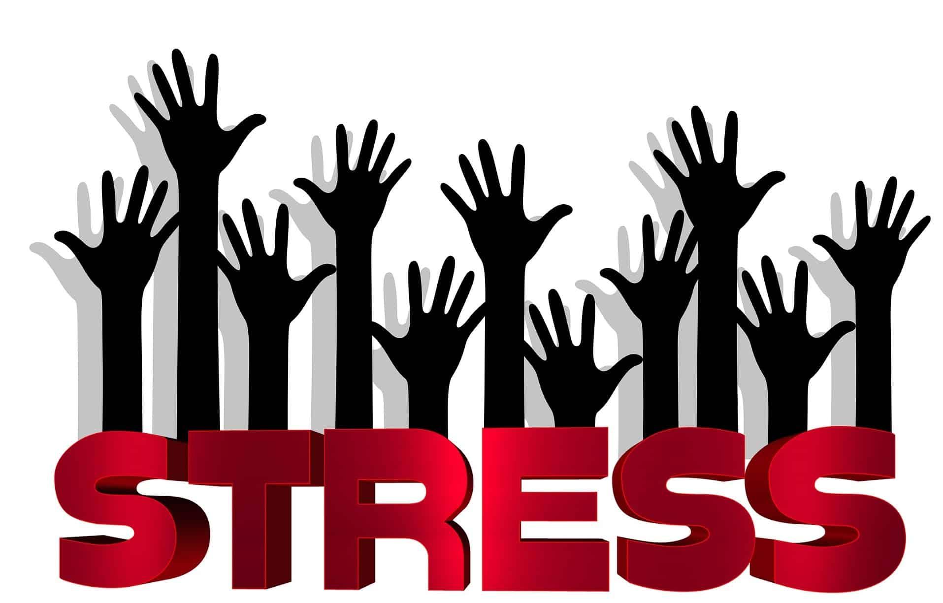 "Programme ""STOP STRESS !"" - Reichlen.net"